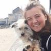 Bèibhinn: Dog sitter in Maynooth