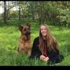 Georgia: Dog sitter in Royal Leamington Spa