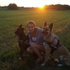 Rosa: Hundesitter in Gießen