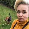 Amy: Dog sitter in Manchester