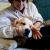 Romane: Dog sitter à Bordeaux