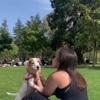 Inès: Dog sitter à Bordeaux