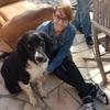 Elise: Dog sitter à Villabé