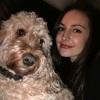 Bridget: Dog sitter in Beckenham