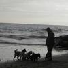 Marc: Paseador con gran experiencia con perros