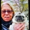 Jocy jocelyne: Dog sitter à Boulogne-Billancourt