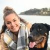 Azelice: Dog sitter à Concarneau