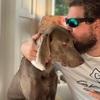 Jonah: Hundeerfahrener Sitter im grünen, Essener Süden