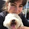 Holly: Dog Walker in Dublin