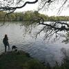 Justine: Dog sitteuse à Auray (56)