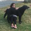 Amandine: Dog sitter passionnée