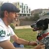 Ferran: No sabes con quien dejar a tu mascota? Yo te la cuido!! Ofrezco paseo, guardería, alojamiento, adiestramiento, equilibrio, etc......