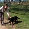 Beatriz: Paseador de perros San Vicente del Raspeig