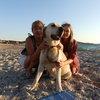 Pascale: Étant sans activité professionnelle je suis disponible pour garder des chiens.J' en ai eu un pendant 16 ans.