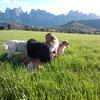 Encarna: Unas fantásticas vacaciones en la montaña