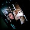 Laura : Cuidador de Perritos en Madrid Sur