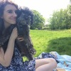 Lily: North London dog walker!