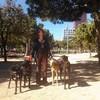 Susana: Cuidador y paseador canino Barcelona