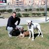 José: Residencia canina