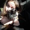 Delfi: Delfi pasea con perros.