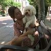 Inés: Los mejores paseos para tu perrito!!