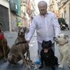 Carlos: Cuidador de mascotas en el centro de valencia