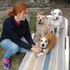 Marisol: Enamorada de los perros con 1200m2 de terreno para ellos