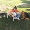 Sofía: Guardería/alojamiento para perros con finca en Ferrol