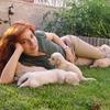 Isabel: Las vacaciones de tu mascota en la sierra de Madrid