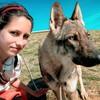 Montse: Walk For Dogs: Paseos llenos de aventuras, diversion, buena compañia y juegos