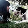 Sara: Cuidadora de perros en Lugo