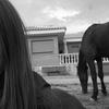 Laura: Cuidadores de perros, gatos, conejos etc en Ponteareas y alrededores