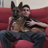Javier: Cuidador de perro en Villalba