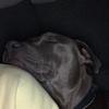 Patricia : Cuidadora perros zona noroeste