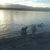 Slider thumb mao drako y emilia nadan en embalse agosto 2014