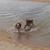 Slider_thumb_2014-02-18_14.46.45
