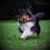 Slider_thumb_momo_original_f_r_die_internetseite_am_6.juni_14