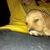 Slider thumb 2012 11 09 297 1