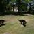 Slider thumb jardin   petit format