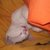 Slider thumb cam01091