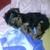 Slider_thumb_cam00173