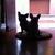 Slider_thumb_marc_052