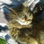 Slider thumb 2014 04 18 16.27.38