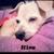 Slider_thumb_nina