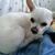 Slider_thumb_cam00593