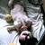 Slider thumb img 0231