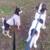 Slider_thumb_2015-02-09-18-22-03-433