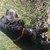 Slider thumb img 20150329 wa0001