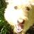 Slider thumb 2015 05 03 17.16.28