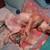 Slider thumb imag4856